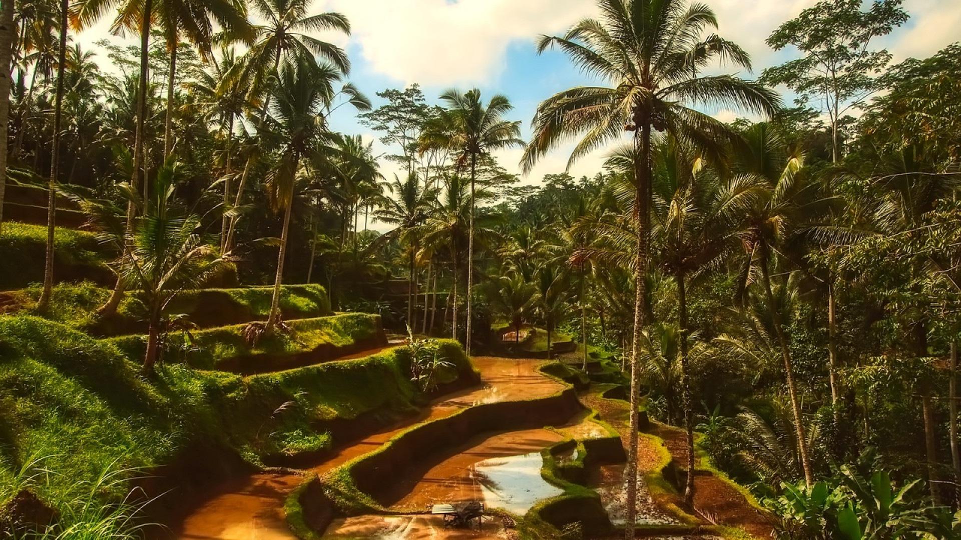 Offrez-vous un voyage de rêve en Indonésie