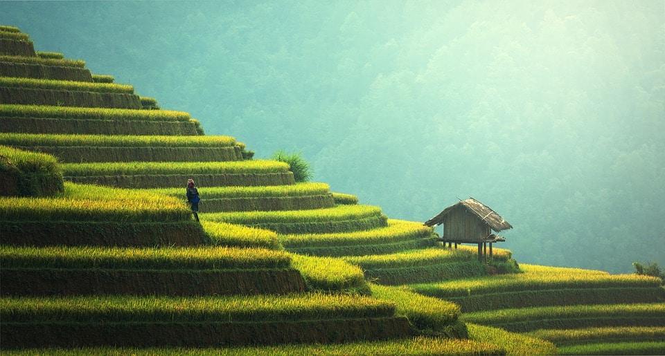Des destinations en Asie parfaites pour les vacances en famille