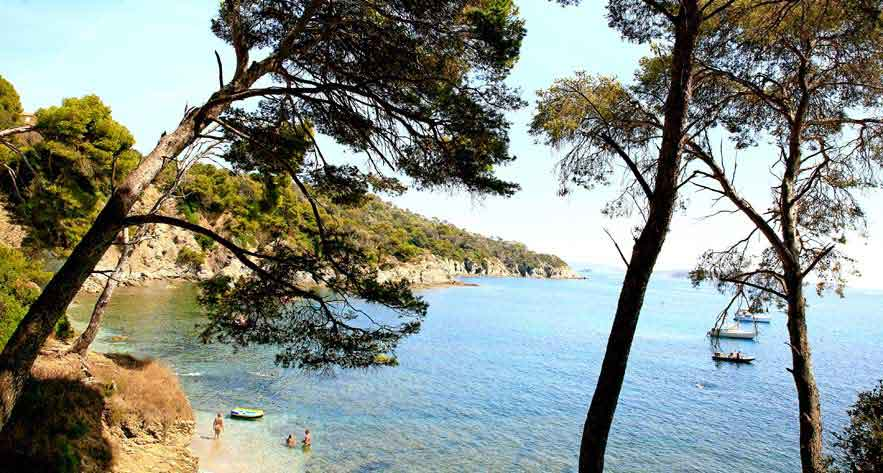 camping hyeres