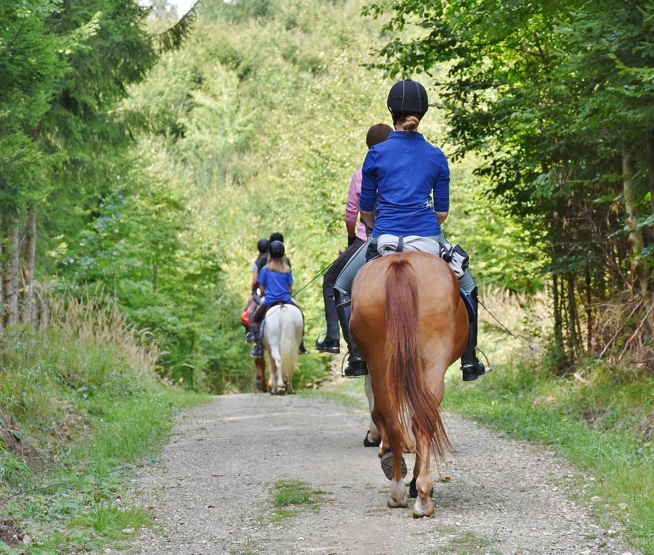 Balade à cheval dans le parc du Vexin dans le Val-d'Oise